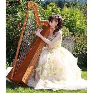 魅惑のハープとダンスアートの世界 森万由美・慶野保子ディナーコンサート