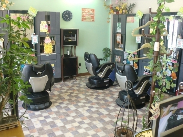 HairSalon echo