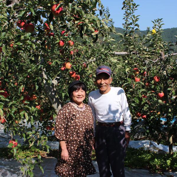 森のりんご園 [日立市/果物狩り...